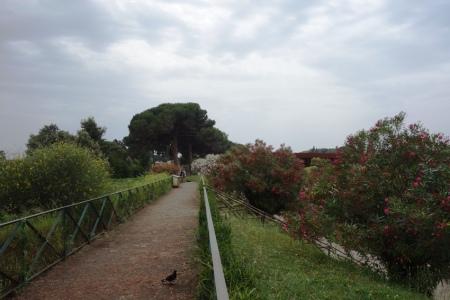 4.gün 009 (Pompei antik kenti bahce)