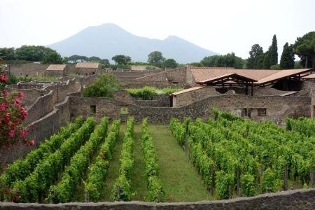 4.gün 012 (Pompei antik kentinden Vezuv)