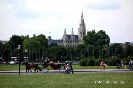 Uzaktan Rathaus (Viyana Belediye Binası)