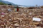 Yason sahilindeki çöpler